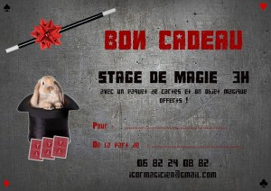bon cadeau stages SMALLER