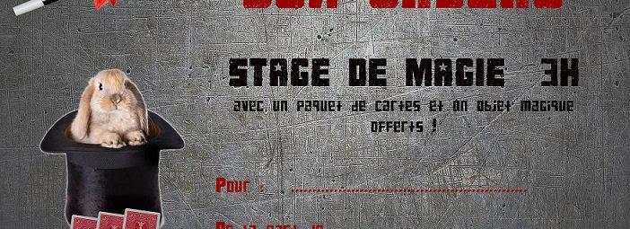Stages et Cours de Magie avec Igor
